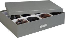 Contenitore a 12 Scomparti, 31 x 43 x 10,5 cm, Colore Grigio